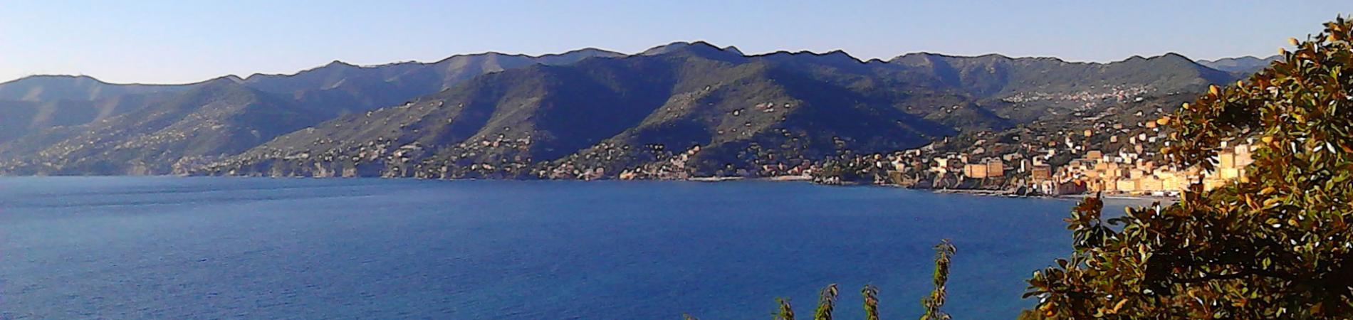 Zona Omogenea - Paradiso - Banner
